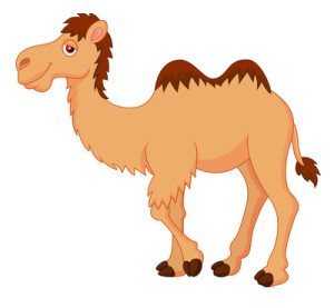 camel-graphic
